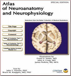 Atlas of Neuroanatomy Netter