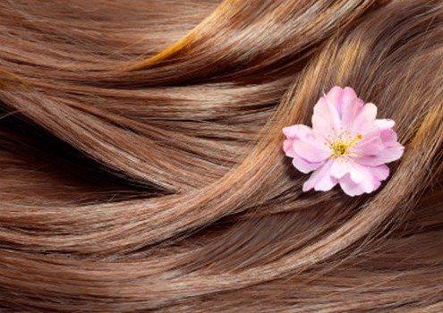 مو و گل